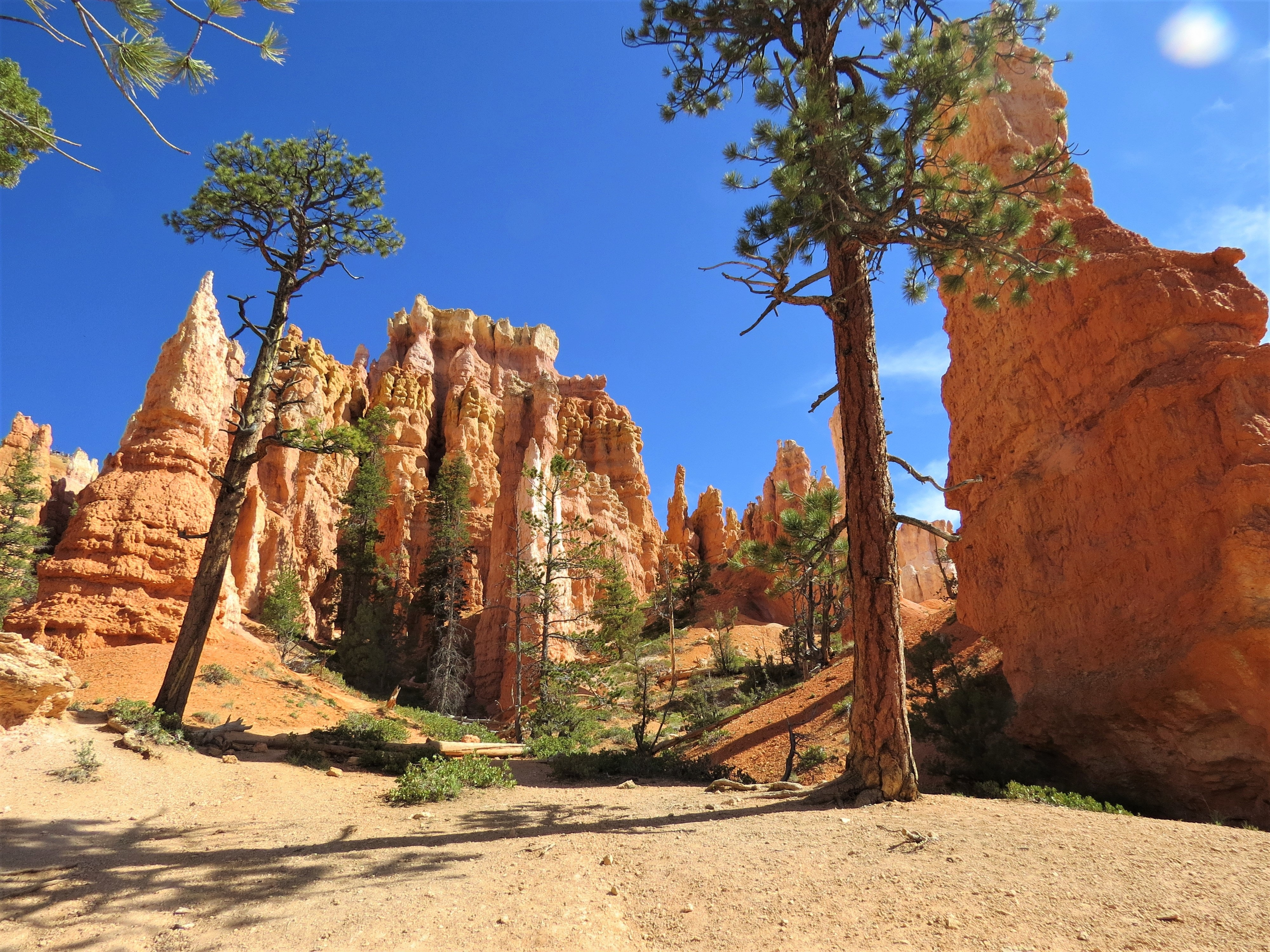 Utah Atv Trails 14 Awesome Trails You Can T Miss Neighbor Blog
