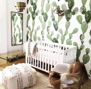 Interior Nursery Design: Succulents