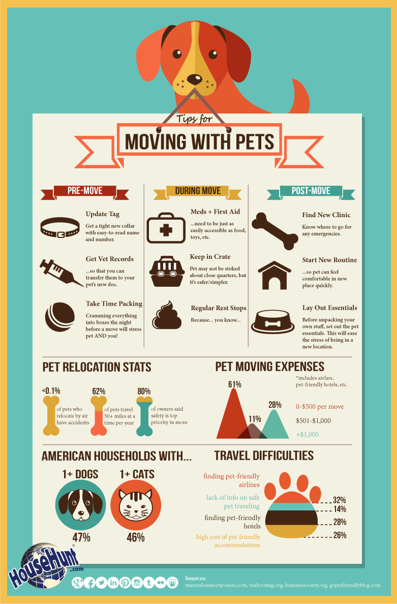 Moving With A Dog - Infographic from HouseHunt.com