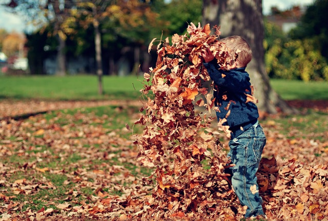 Boy throwing leaves in the air