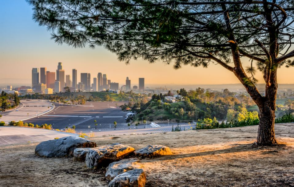 Elysian Park with the Los Angeles skyline in the background