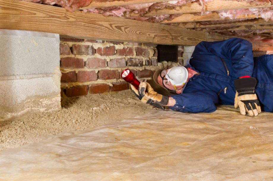 inspector looking inside a crawlspace
