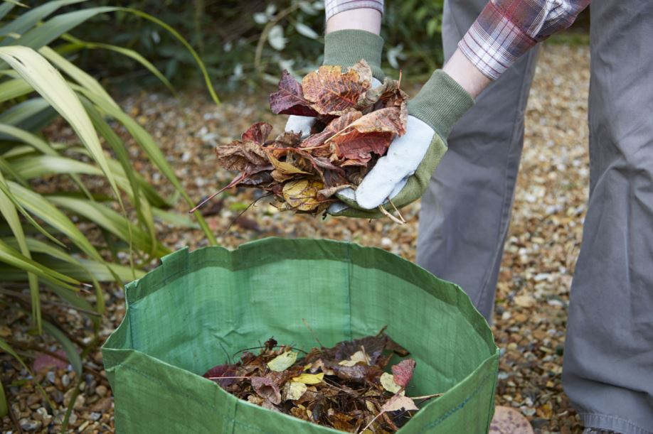 someone clearing away leaves into a green waste bag
